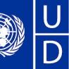 UNDP logo_0