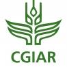 CGIAR green logo